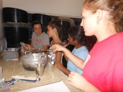 Emily, Sarah, Priya, and Lauren, from Team C, preparing their samples.